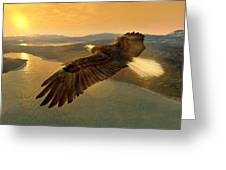 Soaring Eagle Greeting Card by Ray Downing