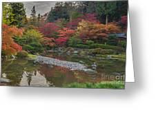 Soaring Fall Colors In The Arboretum Greeting Card