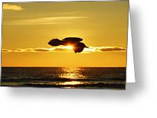Soaring With Confidence Greeting Card