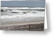 Socked By Sandy Greeting Card