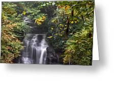 Soco Falls Greeting Card by Francis Trudeau