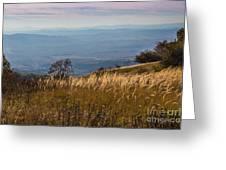 Sofia Valley From Vitosha Mountain October Early Twilight Greeting Card