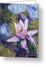 Water Lily Photography Tender Moments  Greeting Card