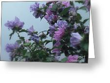Soft Blues And Pink - Spring Blossoms Greeting Card