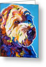 Soft Coated Wheaten Terrier - Max Greeting Card