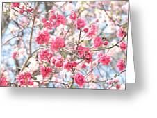 Soft Colors Of Spring Greeting Card