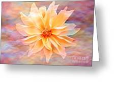 Soft Delightful Dahlia Greeting Card