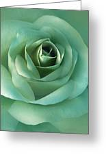 Soft Emerald Green Rose Flower Greeting Card