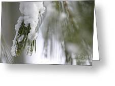 Soft Ice Greeting Card