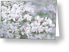 Soft Lavender Dancing Azalea Flowers Greeting Card
