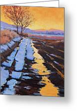Soft Reflections At Sunset Greeting Card by Susan McCullough