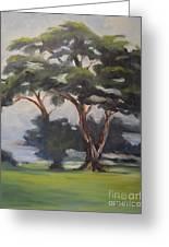 Soft Trees Greeting Card