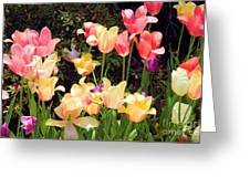 Soft Spring Colors Greeting Card