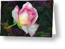 Soft Unfolding Greeting Card