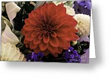 Softly Red Greeting Card