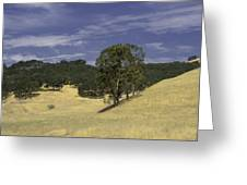 Open Spaces Greeting Card