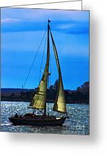 Solar Sail Greeting Card