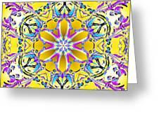 Solar Sunstar Greeting Card by Derek Gedney