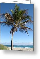 Sole Palm Greeting Card