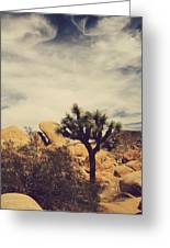 Solitary Man Greeting Card by Laurie Search
