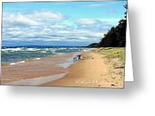 Solitude Beach Greeting Card