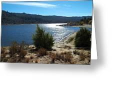 Solitude - Lake Hemet Greeting Card