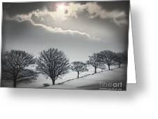 Solitude Of Coldness Greeting Card