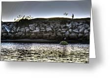Solo At The Harbor At Dusk 2 Greeting Card