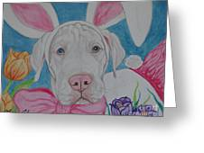 Some Bunny Says Spring Has Sprung Greeting Card