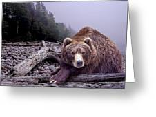 Some Days You Eat The Bear Some Days The Bear Eats You Greeting Card