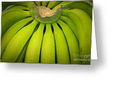 Some Fresh Green Bananas On A Street Fair In Brazil Greeting Card