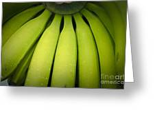 Some Green Fresh Bananas On A Street Fair In Brazil. Greeting Card by Ricardo Lisboa
