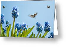 Something In The Air Greeting Card by John Edwards