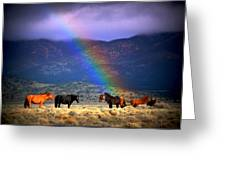Somewhere Over The Rainbow Greeting Card by Jeanne  Bencich-Nations