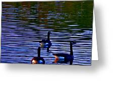Song Of Geese Greeting Card
