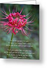 Song Of Solomon - The Flowers Appear Greeting Card