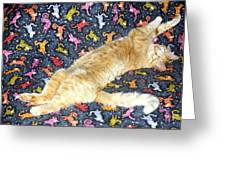 Sonny Cat On Sacred Cat Quilt Greeting Card
