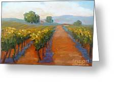 Sonoma Vineyard Greeting Card by Carolyn Jarvis