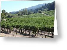 Sonoma Vineyards In The Sonoma California Wine Country 5d24541 Greeting Card