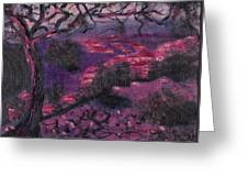 Sonora Desert Greeting Card