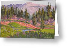 Sonora Pass Meadow Greeting Card