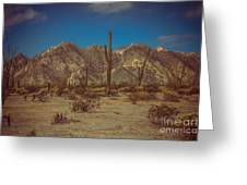 Sonoran Desert Greeting Card