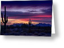 Sonoran Desert Skies  Greeting Card