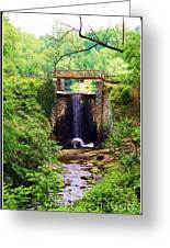 Soothing Cascade Greeting Card