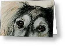 Sophia's Eyes Greeting Card