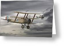Sopwith Triplane Greeting Card by Pat Speirs