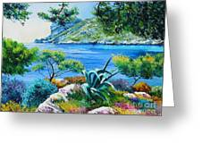 Sormious Cove Greeting Card