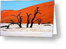 Sossusvlei Scene Greeting Card