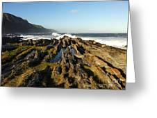 South Africa Coast Greeting Card