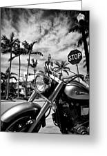 South Beach Cruiser Greeting Card